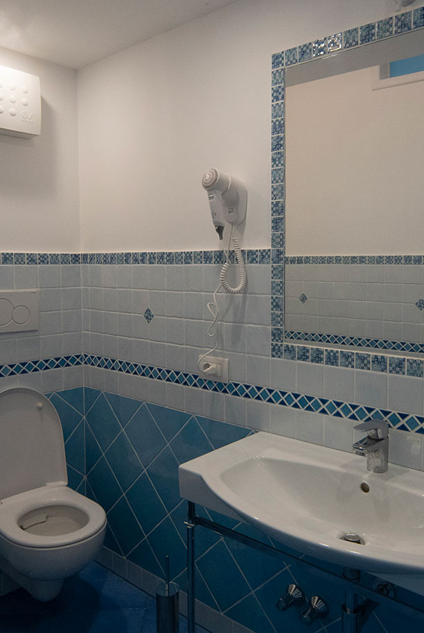 Deluxe Room Toilette